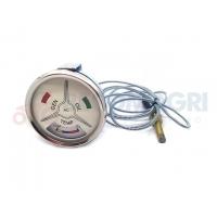 Sonda temperatura cu ceas Ford  Electrice  Ford